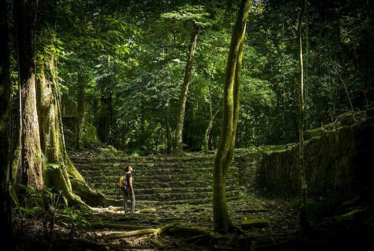 Jungle trek in Mayan jungle ruins in Mexico. Jungle Expedition