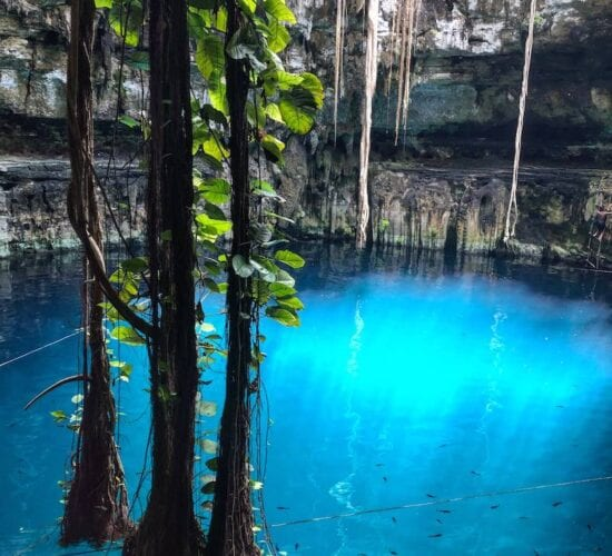 Breathtaking view from inside of Cenote Oxman, Mexico.