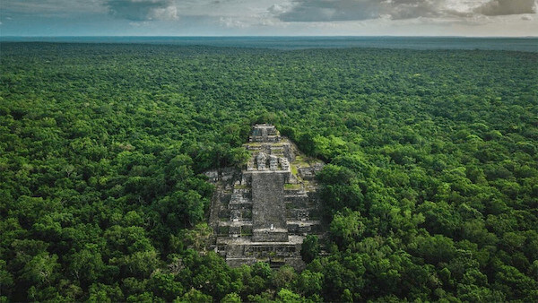 Unbelievable Mayan ruins of Cakalmul in the middle of a massive jungle canopy in Mexico.