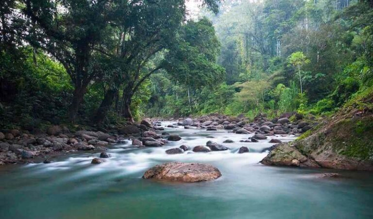 The Tscui River near the indigenous town of Yorkin in Talamanca, Costa Rica.
