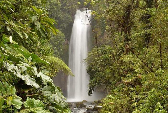 Dazzling waterfall in the middle of the fascinating jungle of Costa Rica