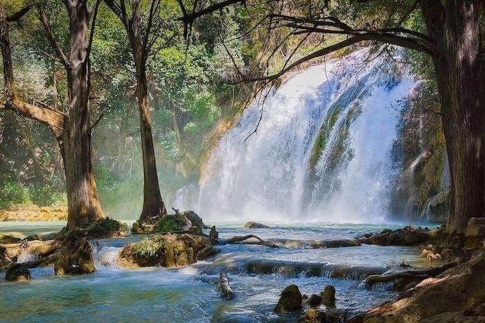 Waterfall in the jungles of Chiapas in Mexico.